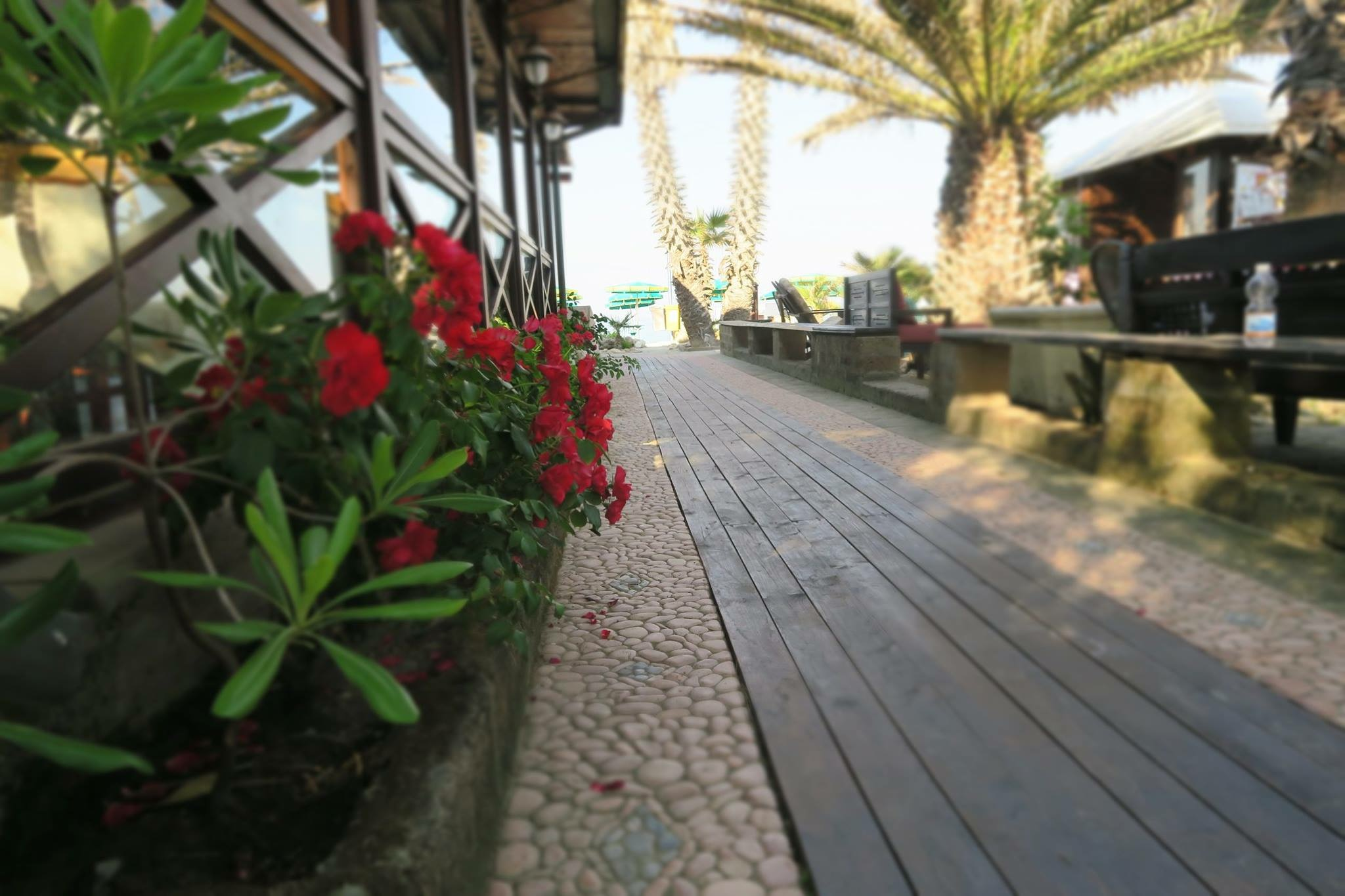 chalet tropical accesso spiaggia